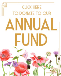 poster for Annual Fund