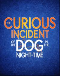 Image for The Curious Incident of the Dog